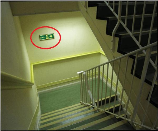 Quan sát các lối thang hiện có tại tòa nhà ngoại trừ thang máy trong khu chung cư